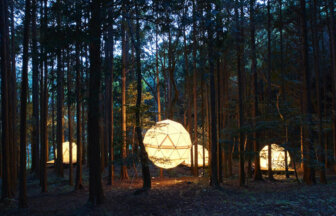 INN-THE-PARKの森の中に佇む吊りテント