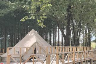 自然に囲まれた58ロハスクラブのテント