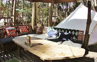Camping・GREENは、森の中で素敵な時間を過ごせます。