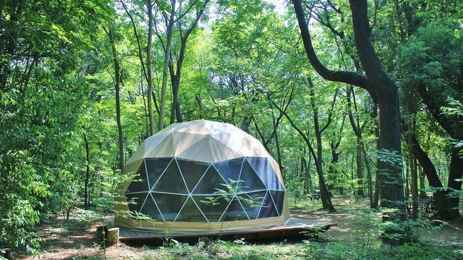 三富今昔村のかわいいドーム型テント、デイキャンプで自然を満喫