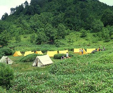 自然の中でテントを張って過ごせる木戸池キャンプ場