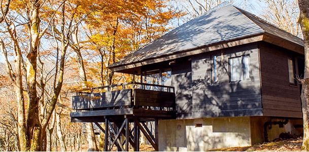 コテージ泊のグランピングができる林間に点在する芦ノ湖キャンプ村