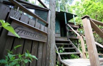 木に囲まれた自然の中にある個性的なログハウス・コテージ「Nakadaki Art Village」