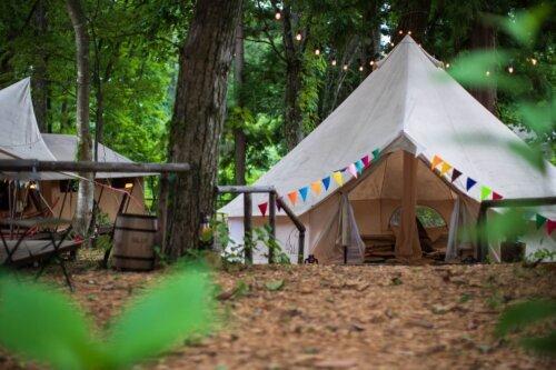 森林に囲まれて、グランピング体験できる白馬樅の木ホテル